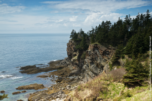 Fundy Cliff.png