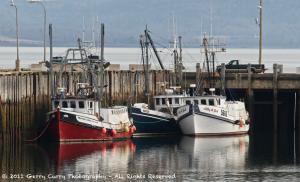Scallop Draggers - Digby Wharf.png